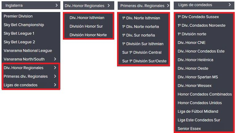 Ligas Inglesas con sus ligas regionales - 9 Niveles