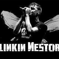linkin_nestor